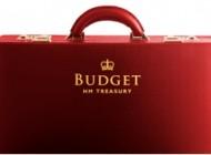 budgetcase11-8648
